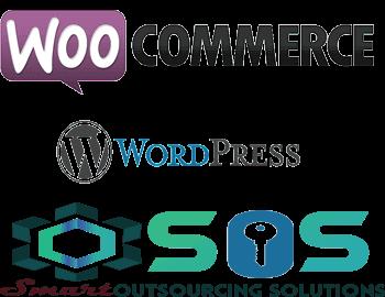 Best E-commarce Development Training